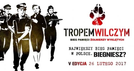 Tropem Wilczym na Ziemi Bolesławieckiej